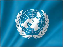 国連の総合協議資格を取得